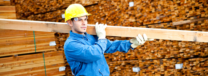 Wood and Plastic Industry and Dustcontrol